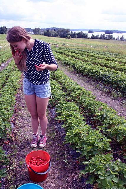 maasika123
