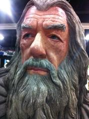facial hair, head, hair, elder, person, beard,