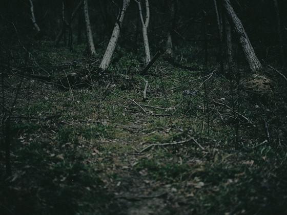 月の光で撮影した、風景写真集制作(写真家 :隼田大輔)_03