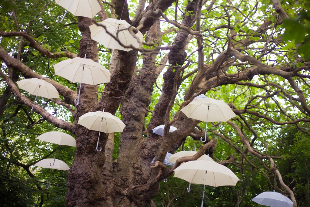 Poppins Tree