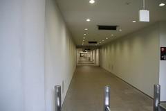 パドック地下トンネル