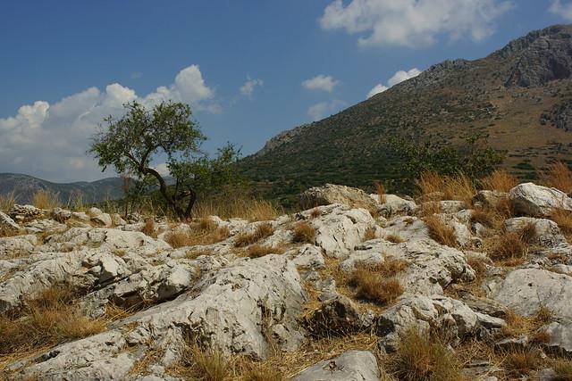 Mycenae (Μυκήνες) Greece, Aug 2012. 02-077c
