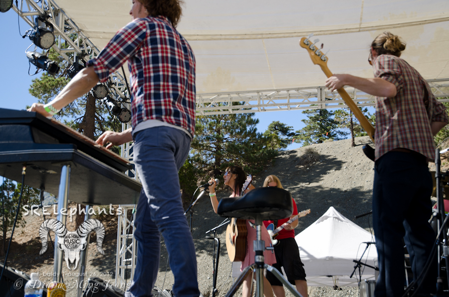 SRElephants | Big Horn Music Festival