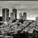 San Francisco View
