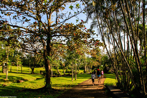 nature garden landscape japanese laguna philippinen lightroom5 tamrondiii18270mm13563