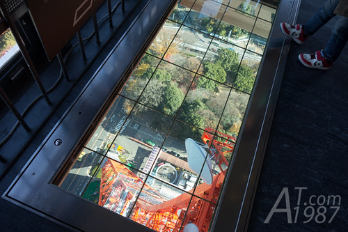 Lookdown Windows at Tokyo Tower