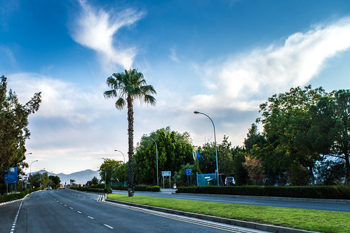 road street city morning blue sky cloud plant streets tree nature grass clouds wow palms landscape nikon view outdoor cyprus palm palmtree 1855mm nikkor montains nicosia lefkosia d3200 vrii