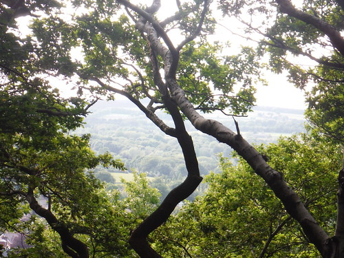 View into the Sheaf Valley from Ladies' Spring Wood