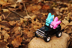 Two Peep in a Jeep