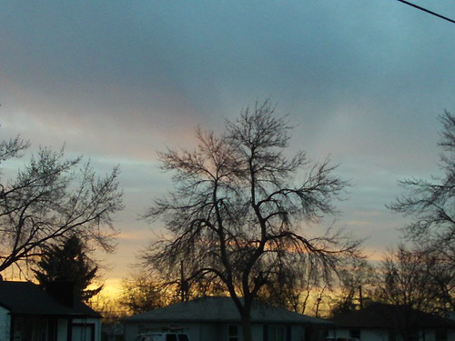 trees sunset nature sunrise colorado shearaesgeek
