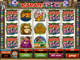 Karate Pig slot game online review