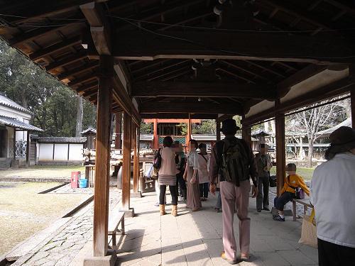 しだれ桜2012@氷室神社-11