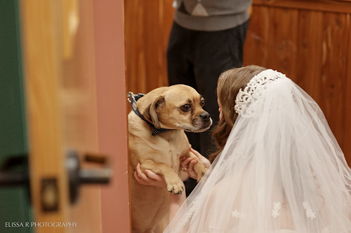 emily-bill-wedding-063-WEB