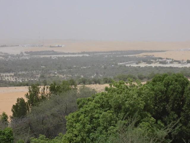 Fotografias do Oasis de Liwa, Abu Dhabi, Emirados Arabes Unidos