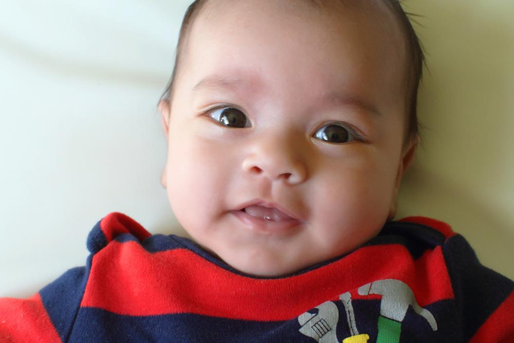 031912_babyFruit01