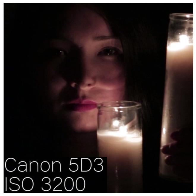 canon5d3_iso3200_100percentcrop