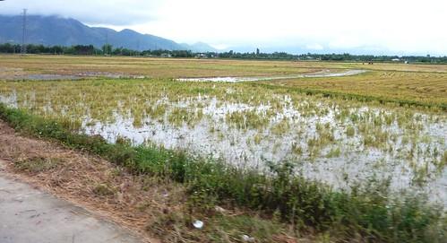 V 12-Route BMT-Nha Trang (80)