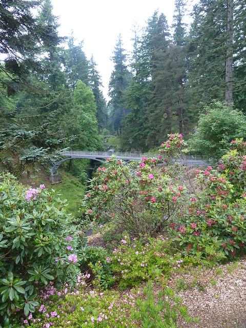 Iron Bridge, Cragside Gardens