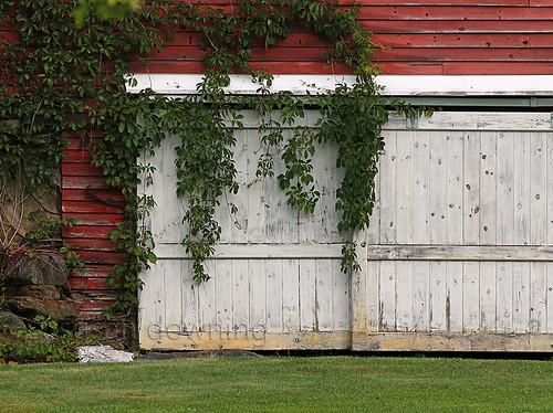 Barn Door {25/52}