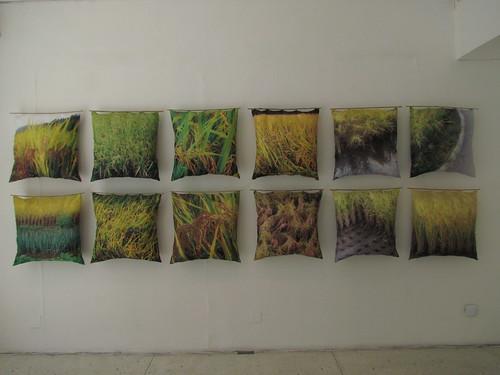 Tiiu Kirsipuu: Ricefields