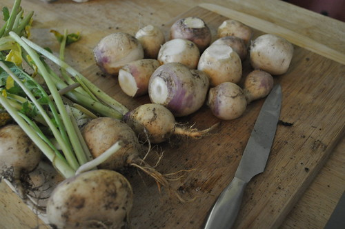 eating local :: turnips