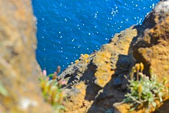 looking off the cliff