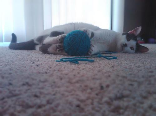 ava yarn ball1'