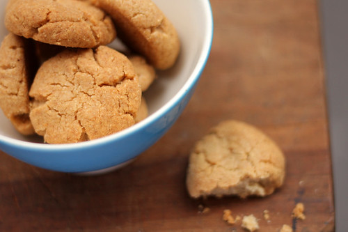 Tahini and Almond Cookies - David Lebovitz