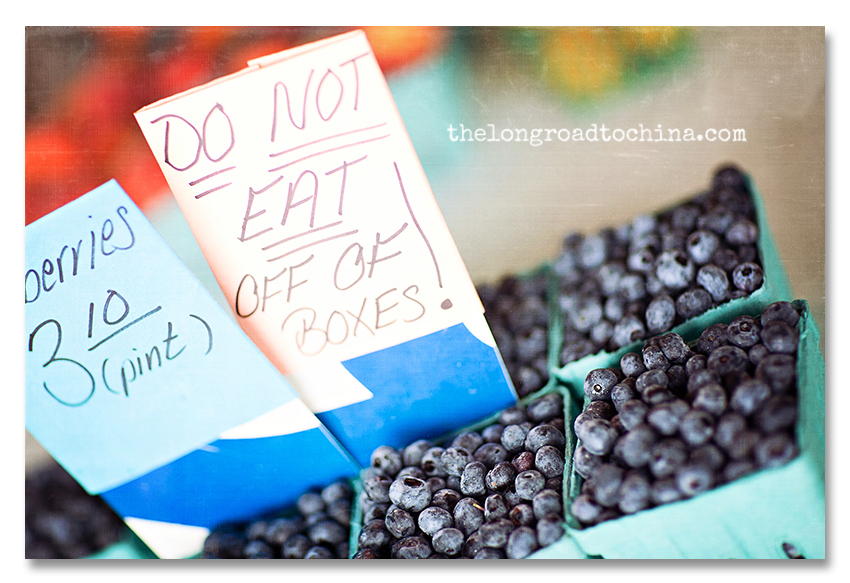 Do Not Eat Blueberries BLOG