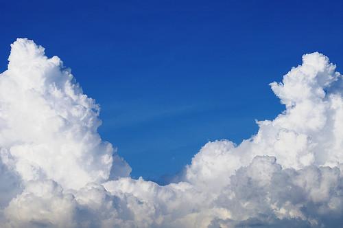 仰望天空的棉花糖