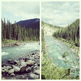 cloudy at elbow falls but still so perfect. #elbowfalls #alberta
