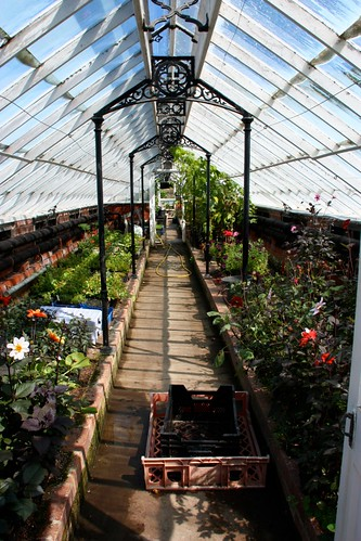 Greenhouse interior at Chatsworth