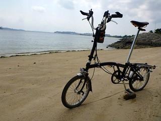 Pasir Ris Park 369 मीटर की लंबाई के साथ समुद्र तट की छवि. park singapore pasirris brompton pasirrispark foldingbicycles h6r