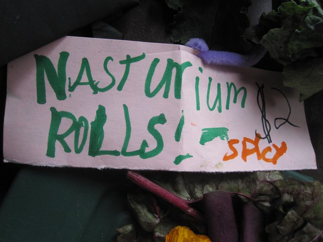 Rolls made with nasturtium greens are tasty and spicy. Photo by Sarah Schmidt.