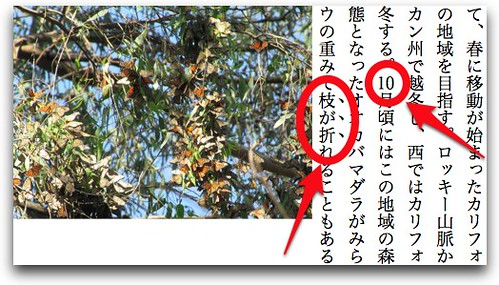 EPUB 3 Flowing ebook with Japanese writing