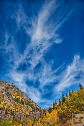 autumn nature canon landscape outdoors colorado unitedstates vail co theodore boothfallstrail 5dmarkii theodoreastark tedstark tstarkcom