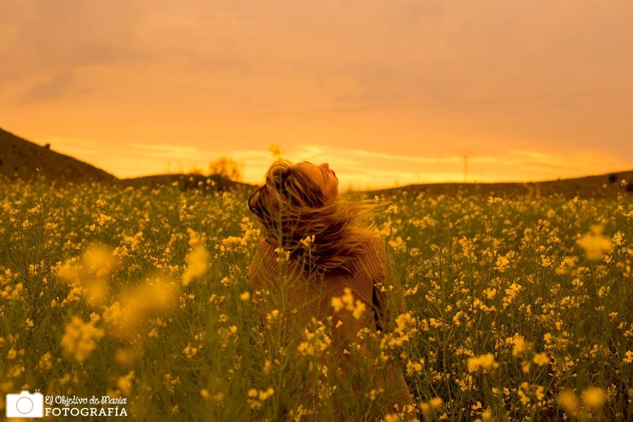 Yellow Leticia