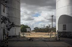 silos, Torrita