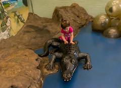 Talia crocodile