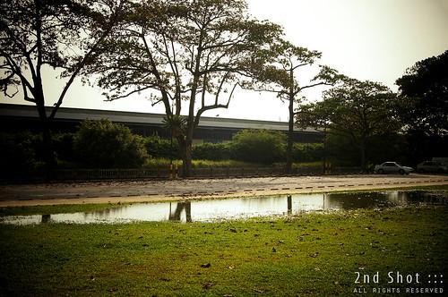 Ponding at Pasir Panjang Park