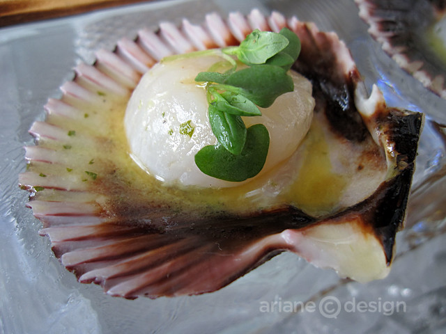 Open-faced scallop ceviche with yuzu, micro basil