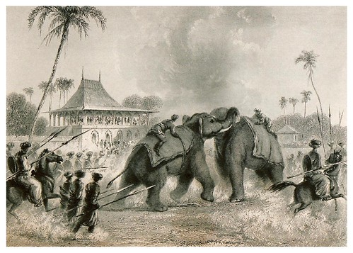 008-Pelea de elefantes-The oriental annual, or scenes in India 1835-1840- William Daniell-© Universitätsbibliothek Heidelberg