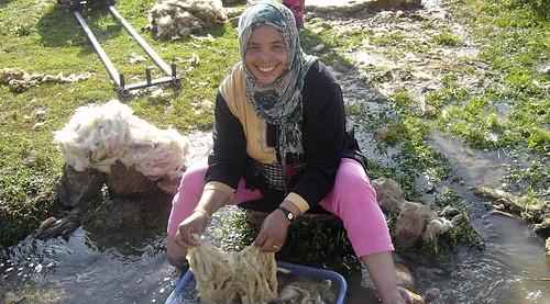 Hashmia washing wool
