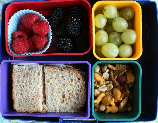 Summer Camp Bento Box #616