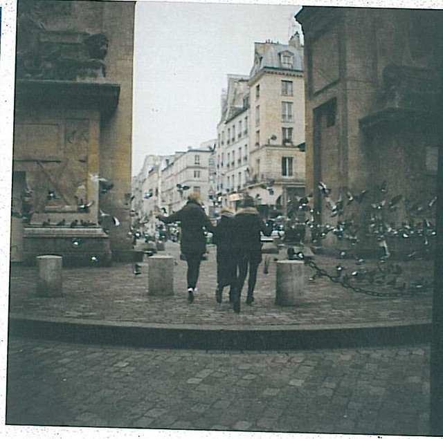 Doves in Paris