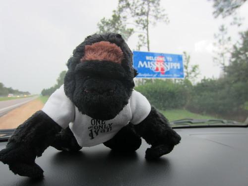 Ivan Visits Mississippi