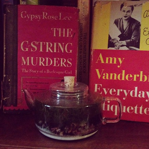 teapot terrarium and books