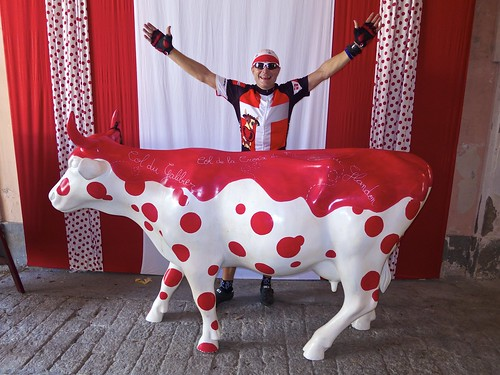Polka Dot Cow