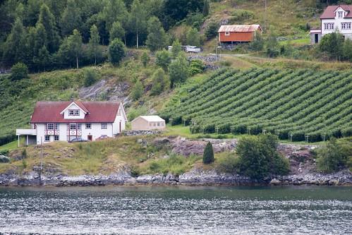 204 pueblito desde ferry Gudvangen-Kaupanger