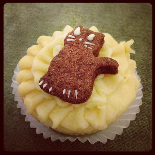 Kitty Cupcake!